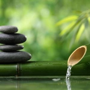 Tous les secrets pour créer une déco de jardin zen et 70 photos inspirantes