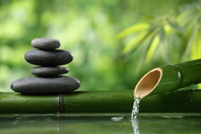 1001 conseils pratiques pour une d co de jardin zen - Fontaine zen d interieur nature et decouverte ...