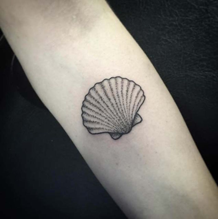 modele tatouage avant bras homme coquillage coquille saint jacques