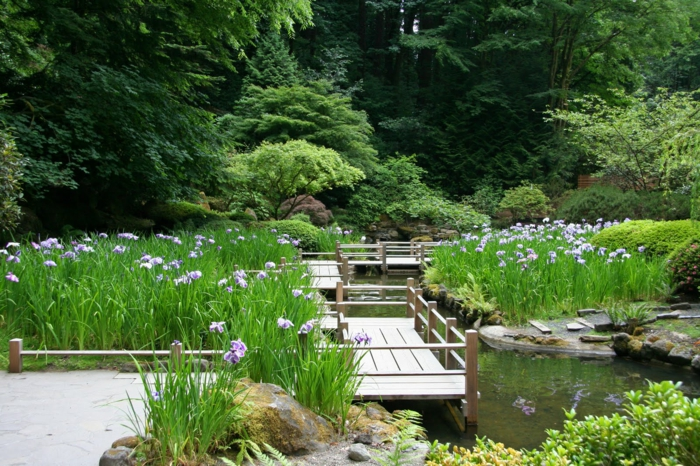 déco exterieur jardin, broussailles violettes, mousse, bassin d'eau, pont zigzag en bois