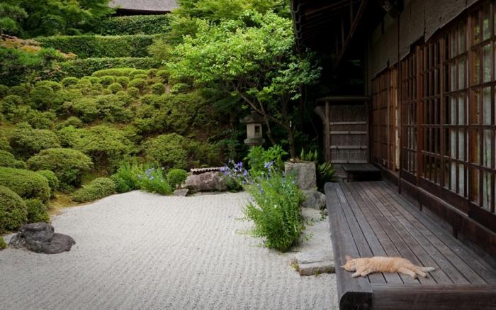 déco de jardin zen, terrain sablé, comment ratisser le jardin zen, véranda en bois, arbres verts