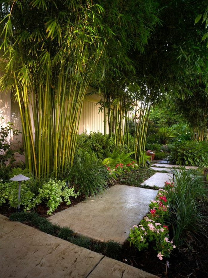 déco de jardin zen, plantes vertes, bambou, fleurs rose, sentier dans le jardin