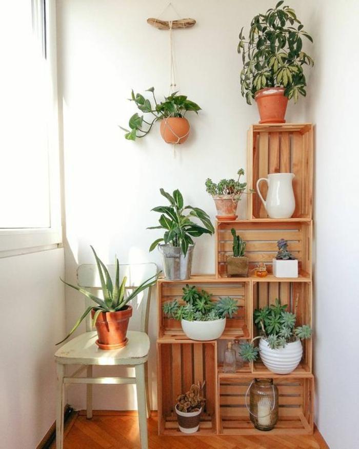 jardiniere en caisses de bois, rangement intérieur pour plantes, chaises en bois blanche, mur couleur blanche, parquet clair