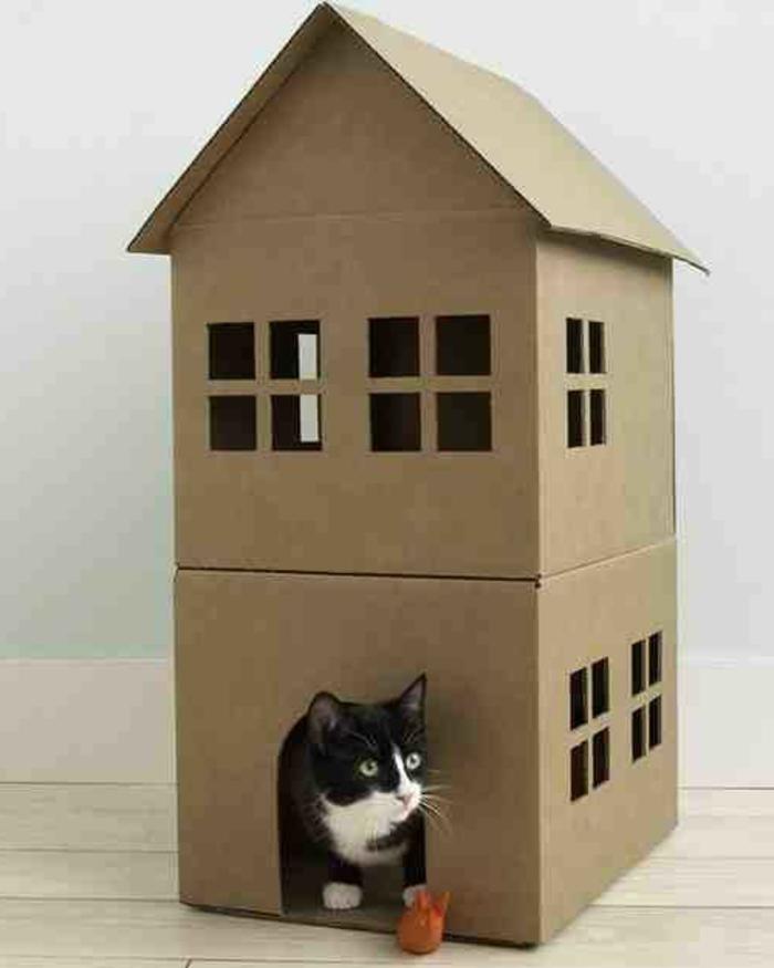 maison de chat sympa, design en carton, maison de deux étages