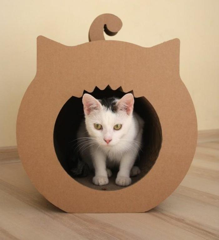 maison de chat en forme de chat, un chat blanc