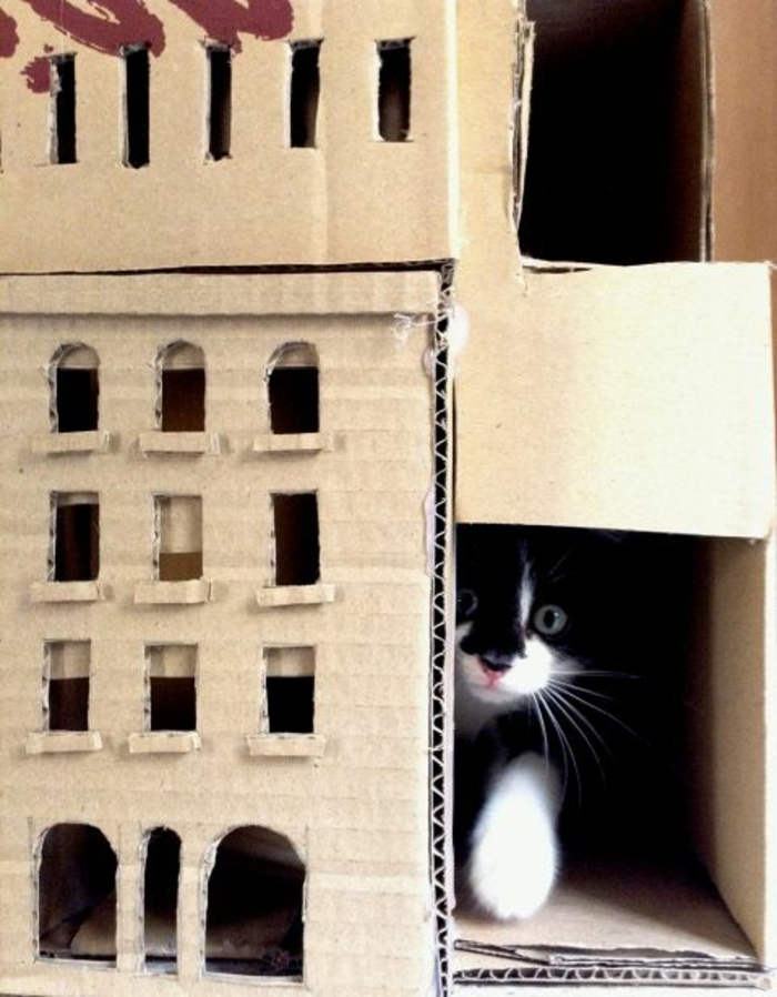 maison de chat en carton, chateau de chat original à faire soi-même