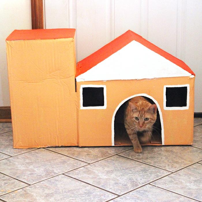 maisonde chat en carton, maison avec deux boîtes de carton et un chat