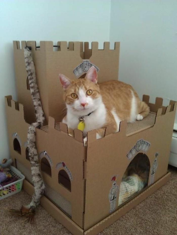 maison en carton pour chat, jouets à chat accrochés à son chateau