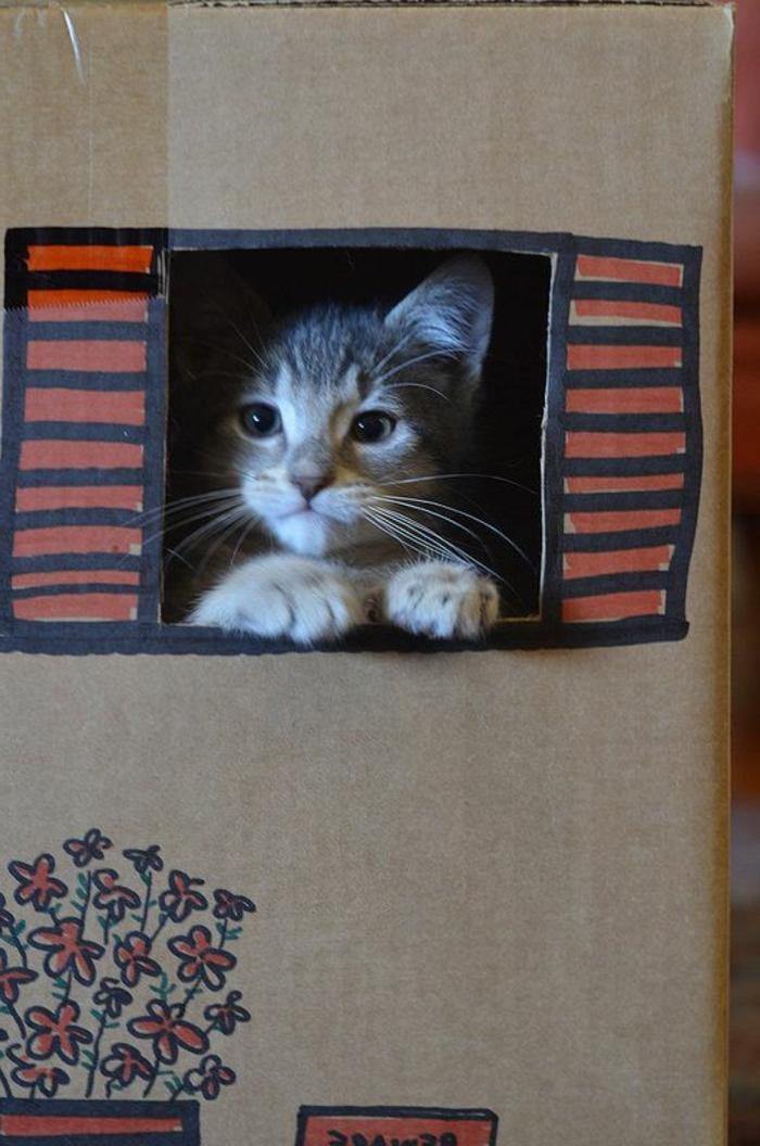 maison en carton pour chat, chat mignon dans une caisse de carton décoré