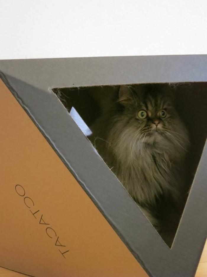 maison pour chat en carton, design géométrique de maison de chat