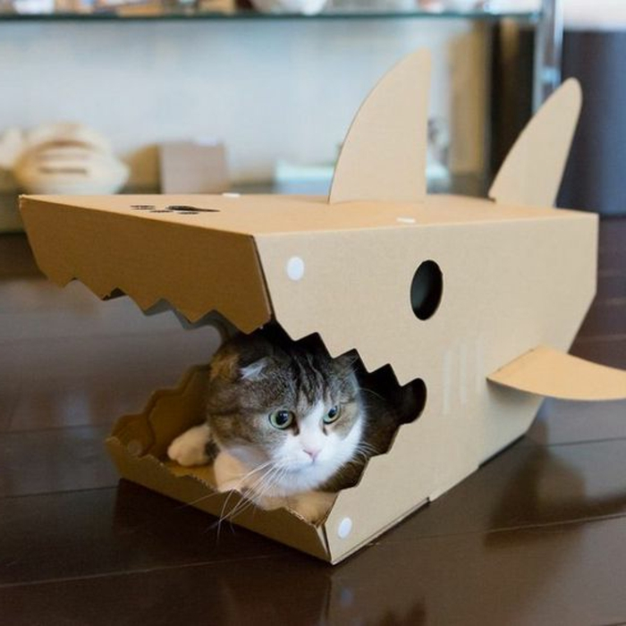 maisonette pour chat en forme de requin