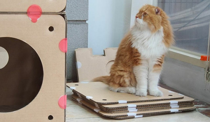 maisonnette pour chat, maison de chat en carton à modeler et créer seul