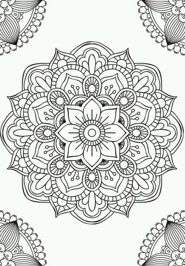 comment dessiner une rosace, mandala à motifs floraux, cercles, feuille, dessin blanc et noir