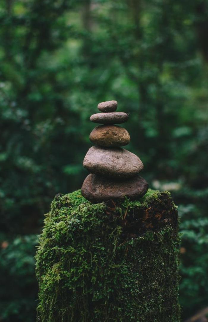 déco de jardin zen, tronc de bois couvert en mousse, figurine zen en pierres, jardin zen japonais