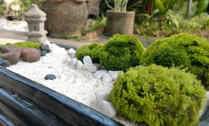 cailloux décoration jardin, sable blanc, broussailles vertes, projet diy, objets decoration jardin en miniature