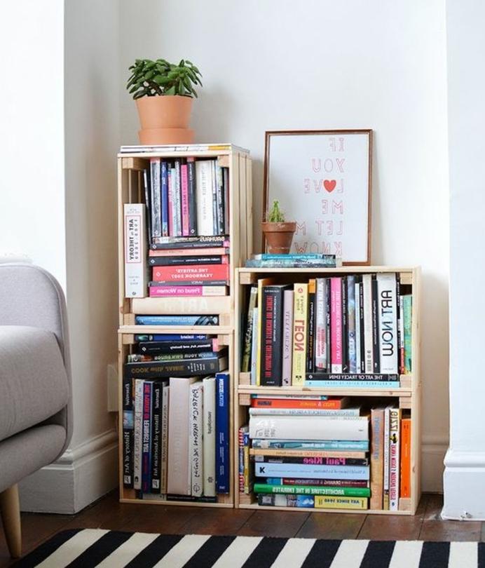 exmple de bibliothèque caisse de vin, livres, cadre décoratif, plantes, tapis zèbre, fauteuil gris, caisses en bois deco
