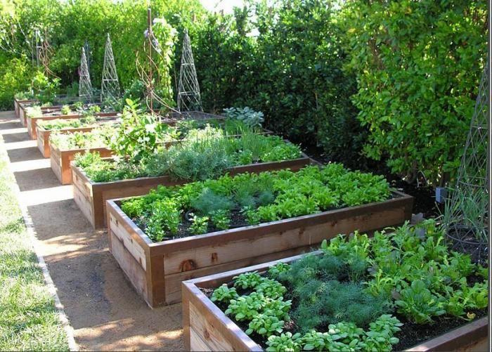 jardins hors sol avec bac en bois jardinière et potager