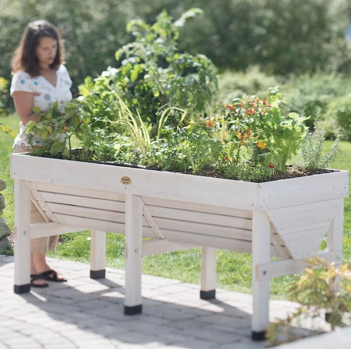 potager en bois haut sur pied pour jardiner debout