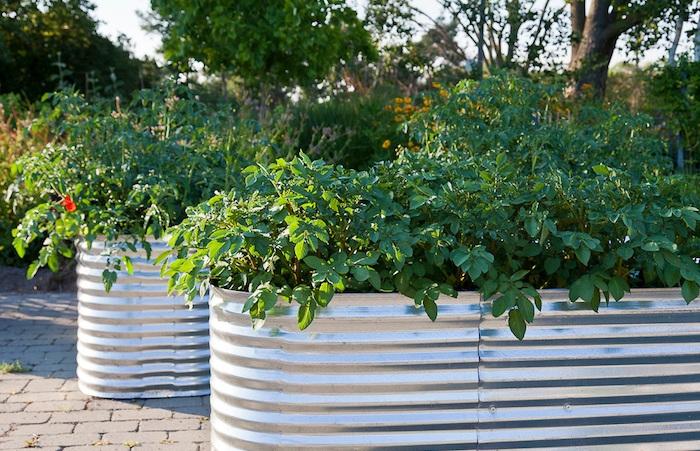 potager surélevé en métal style vintage pour jardiner debout