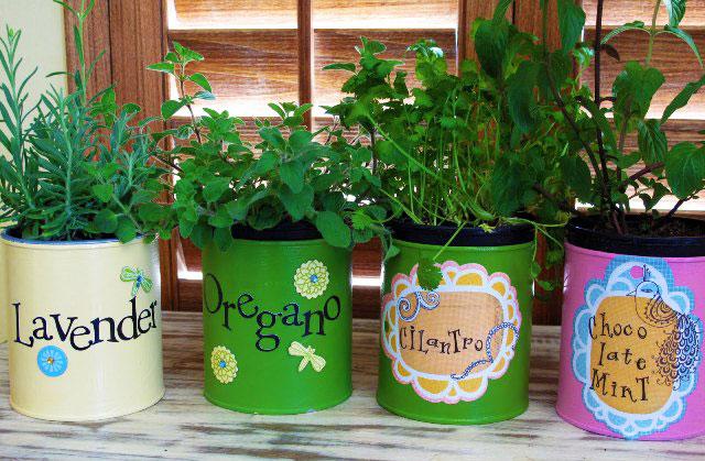 idée comment ranger ses fines herbes, boite de conserve, étiquettes personnalisés, peindre boite de conserve, jardin interieur