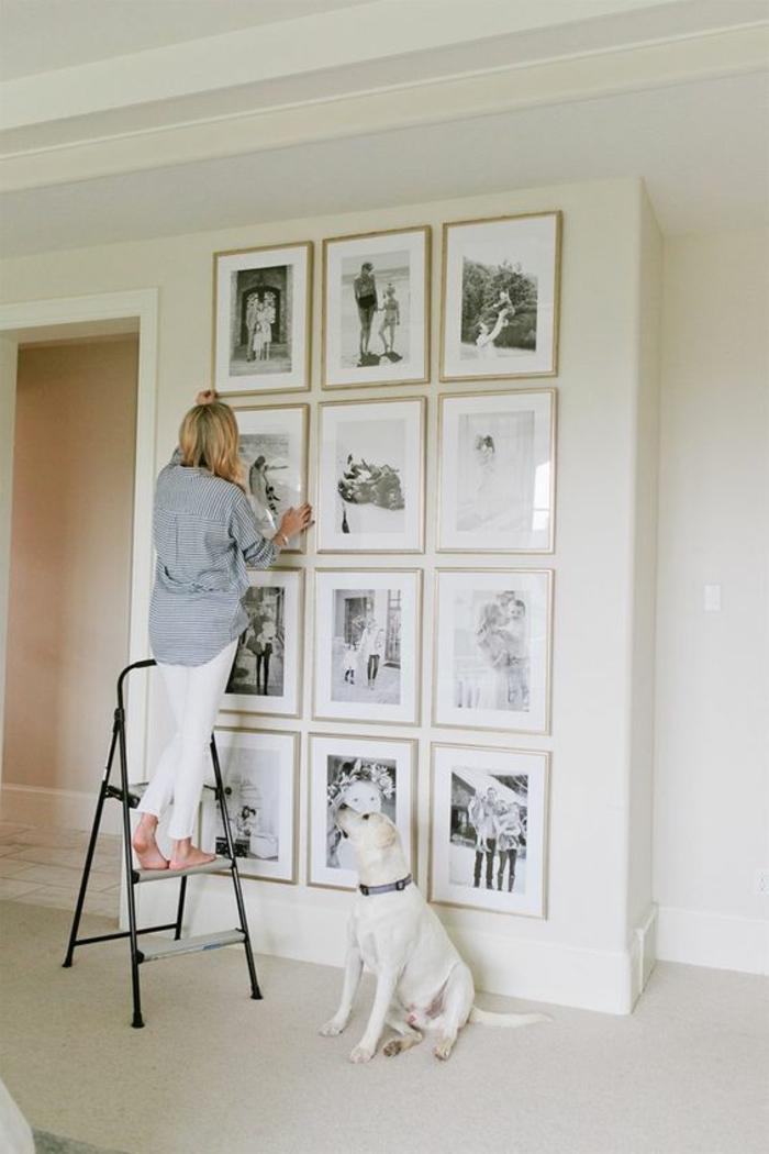 mur de cadres, petite échelle, murs blancs, plancher blanc, chien, deco mur, chemise, pantalon blanc