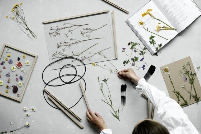 activité créative adultes, apprendre comment faire un herbier, des fleurs et des plantes conservées dans un livre, deco murale florale