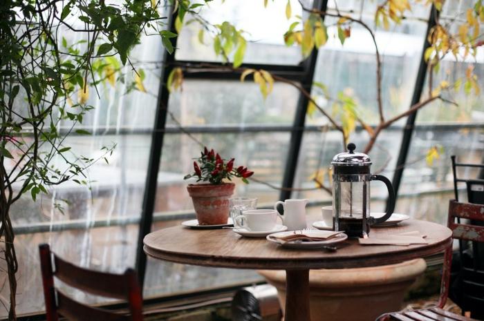 chose a faire quand on s ennuie, fenêtre surdimensionnée, pot à fleur céramique, plantes vertes