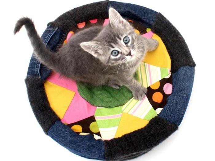 1001 id es coussin chat un tutoriel pour lui des id es pour vous. Black Bedroom Furniture Sets. Home Design Ideas