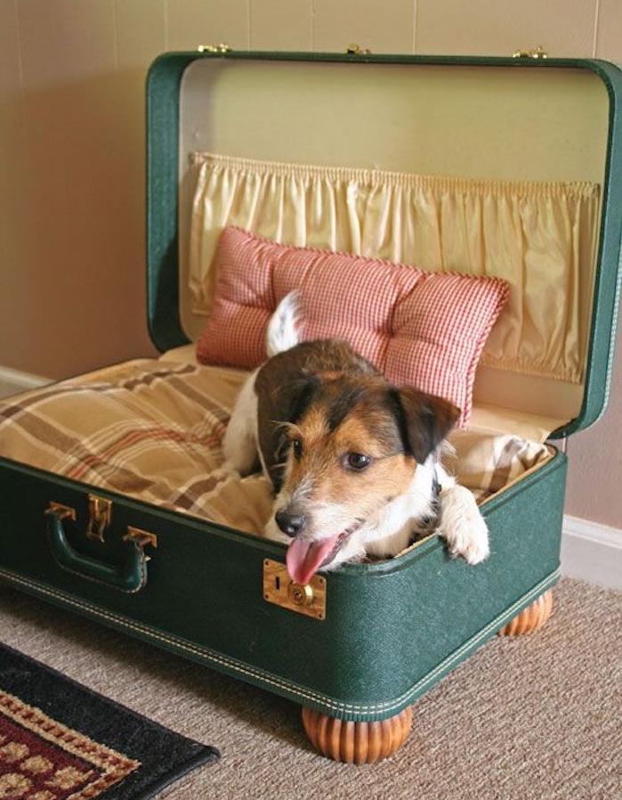 comment fabriquer un panier chien diy avec vieille valise