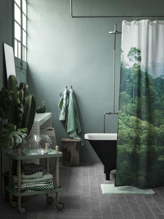 couleur assortie au gris, rideau de douche, baignoire vintage, grand cactus