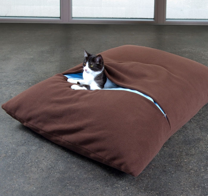 coussin chat couchage lit chats avec couverture