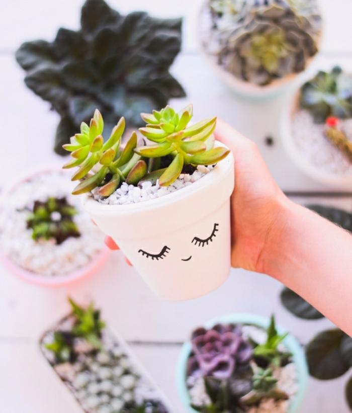 activite manuelle, projet de bricolage, comment customiser un pot de fleur, succulents, des traits de visage, bonhomme dessiné au feutre
