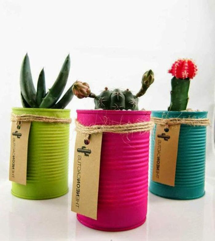 idee comment faire un diy pot de fleur à partir une boite de conserve, customisée à la peinture colorée, plantes succulentes et cactées