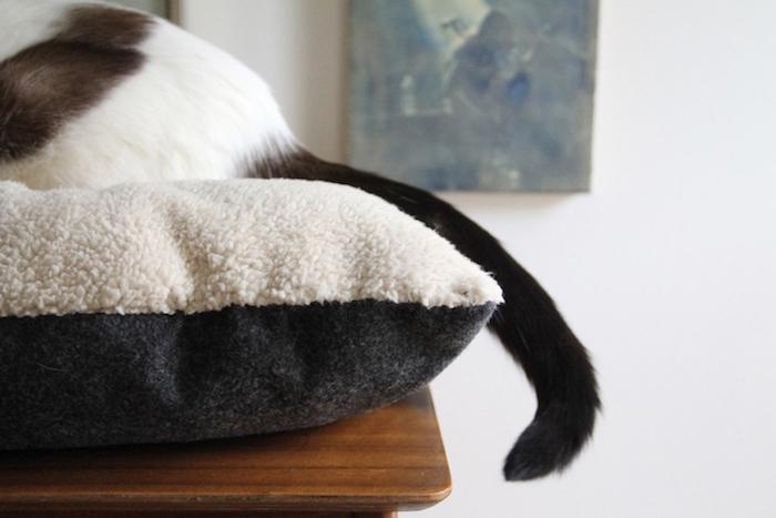 faire un coussin pour chat maison fabriquer oreiller pour chaton diy tutoriel