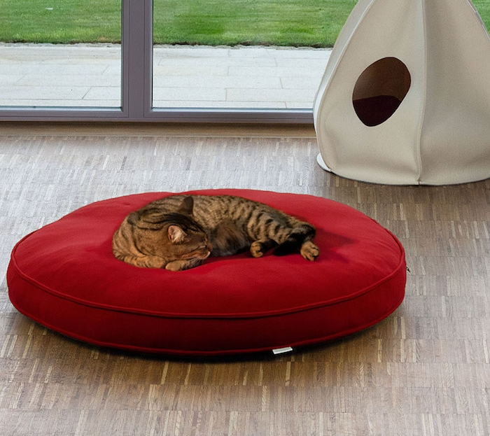 coussin pour chat sol style couchage couffin chats salon
