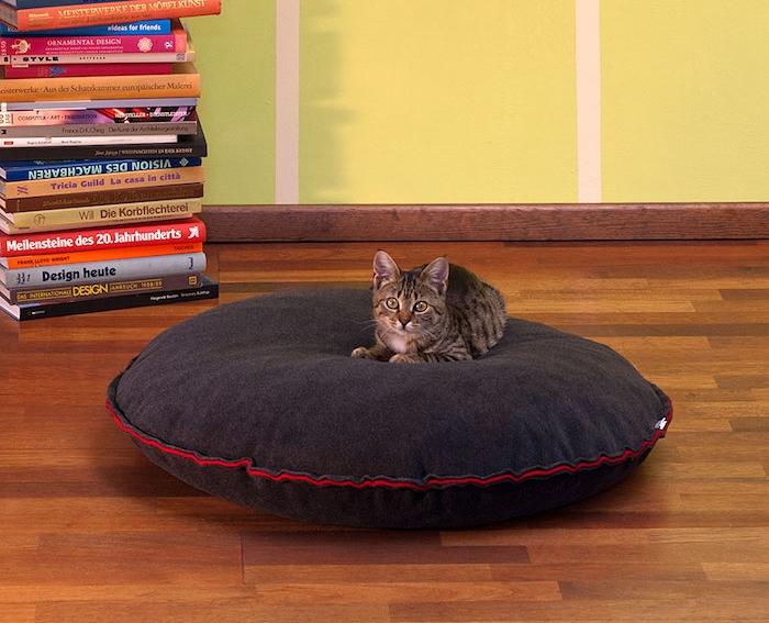 coussin chat coussins pour chats de sol sur le sol couchage