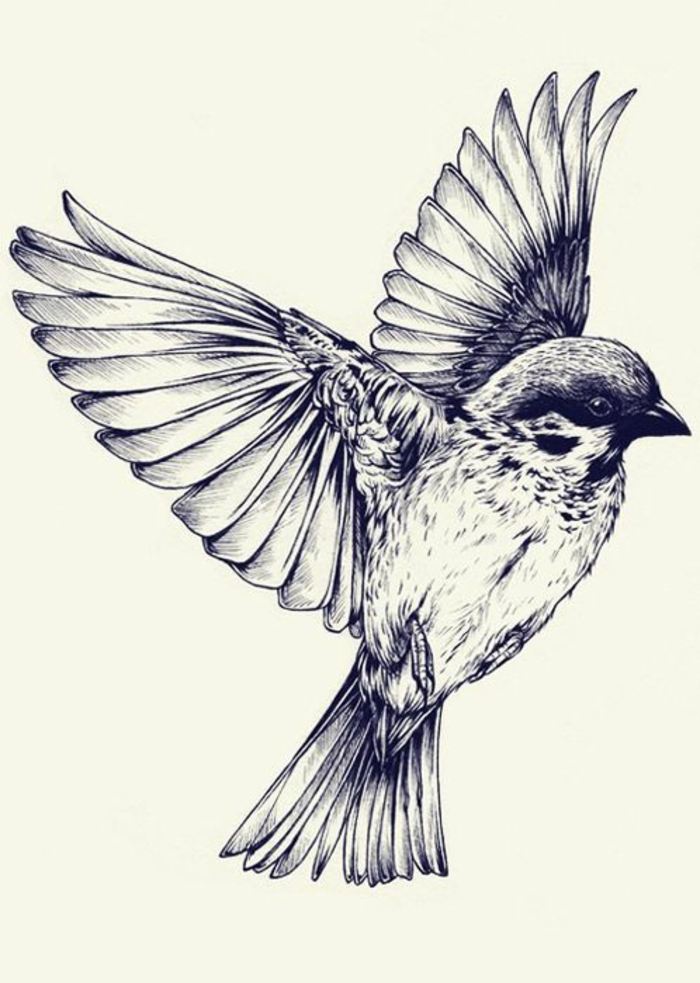 Le tatouage oiseau signification tatouage oiseau homme