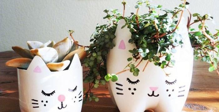 que faire avec des bouteilles en plastique, repeintes en blanc, dessin visage chaton, plantes succulentes, activité manuelle adulte