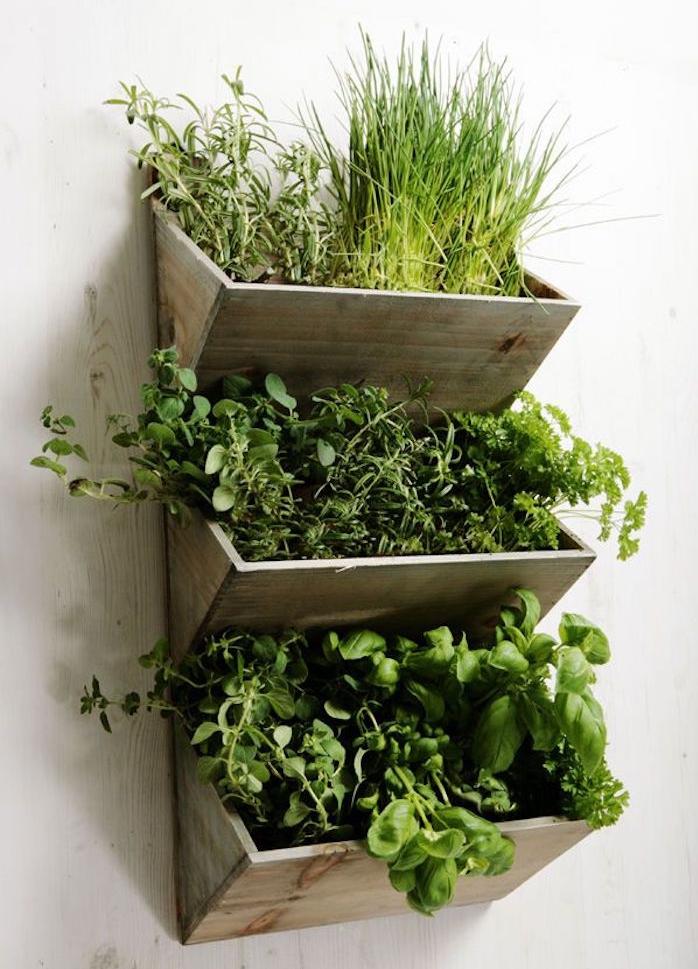 bacs à plantes interieur style jardinière maison avec caisse en bois déco murale