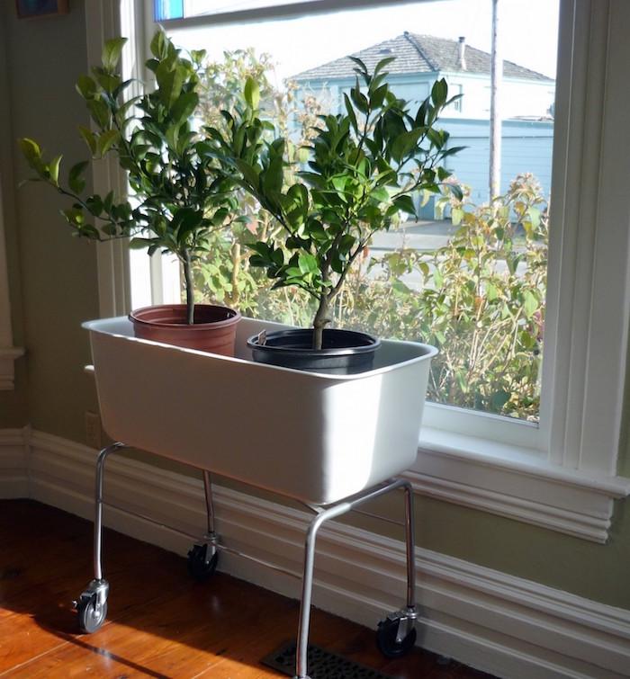 grand pot rectangulaire haut sur roulettes pour jardiniere plantes d interieur