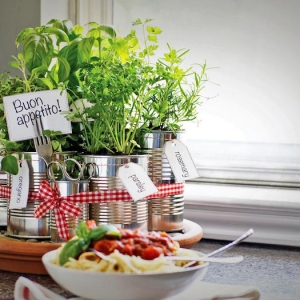 Jardinière d'intérieur - cultivez votre petit jardin intérieur