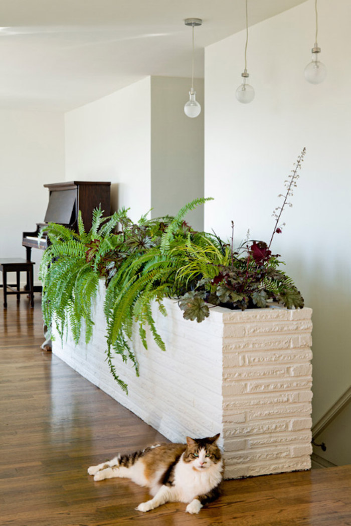 Jardiniere Interieur Moderne Dans Faux Mur Salon Avec Plantes