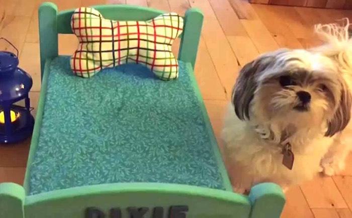 fabriquer un lit pour chien petit couchage chiens salon