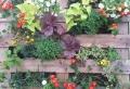 Comment faire un mur végétal en palette – astuces, tutos et plusieurs photos inspirantes