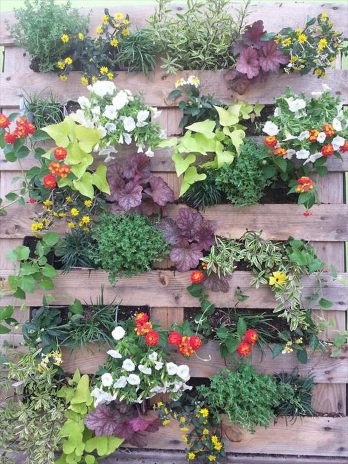 mur végétal, palette dressée avec des différentes espèces de fleurs plantées