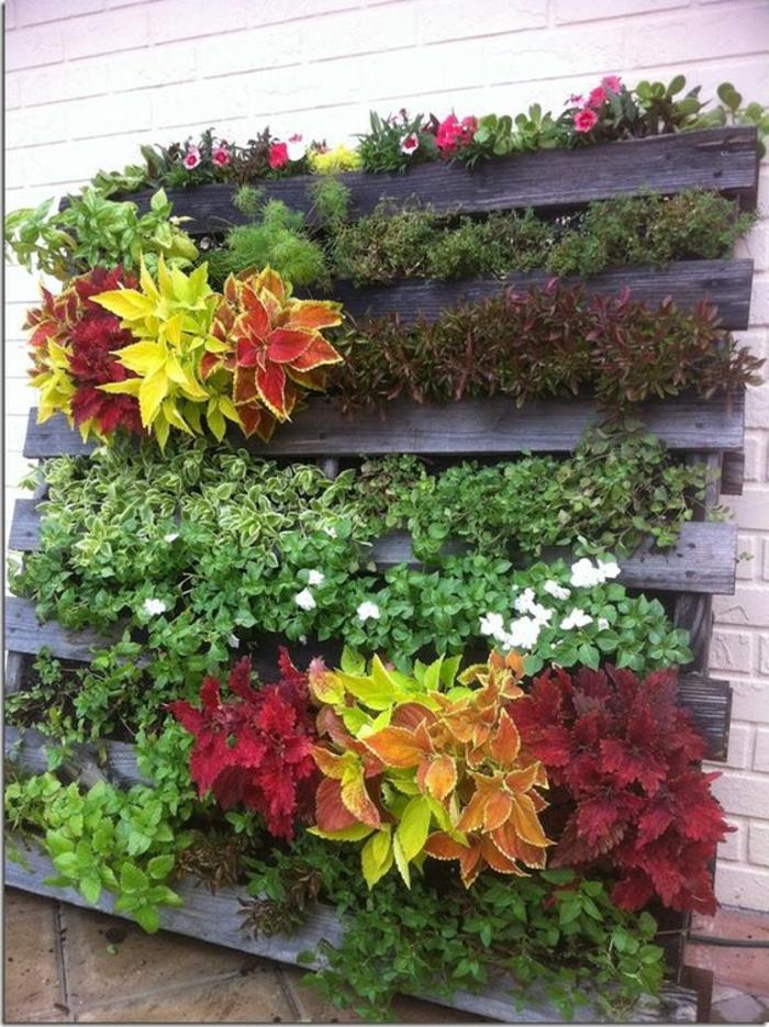 mur végétal abondant avec cultures élevées sur palette fromant des touffes
