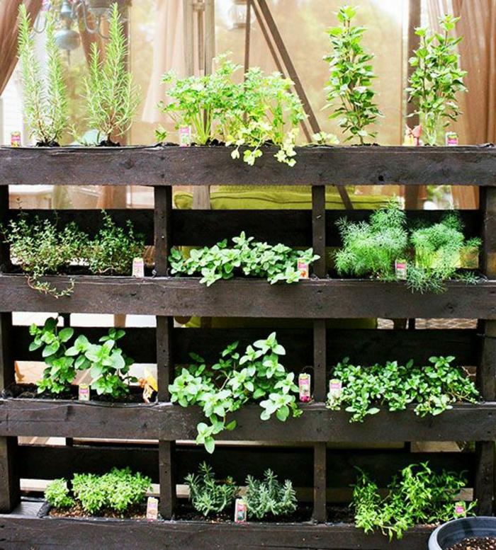 mur végétal en palette, jardin à plusieurs étages en bois de palette