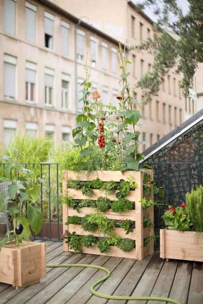 mur végétal palette, jardinières en bois de palette, plantation de tomates sur le balcon