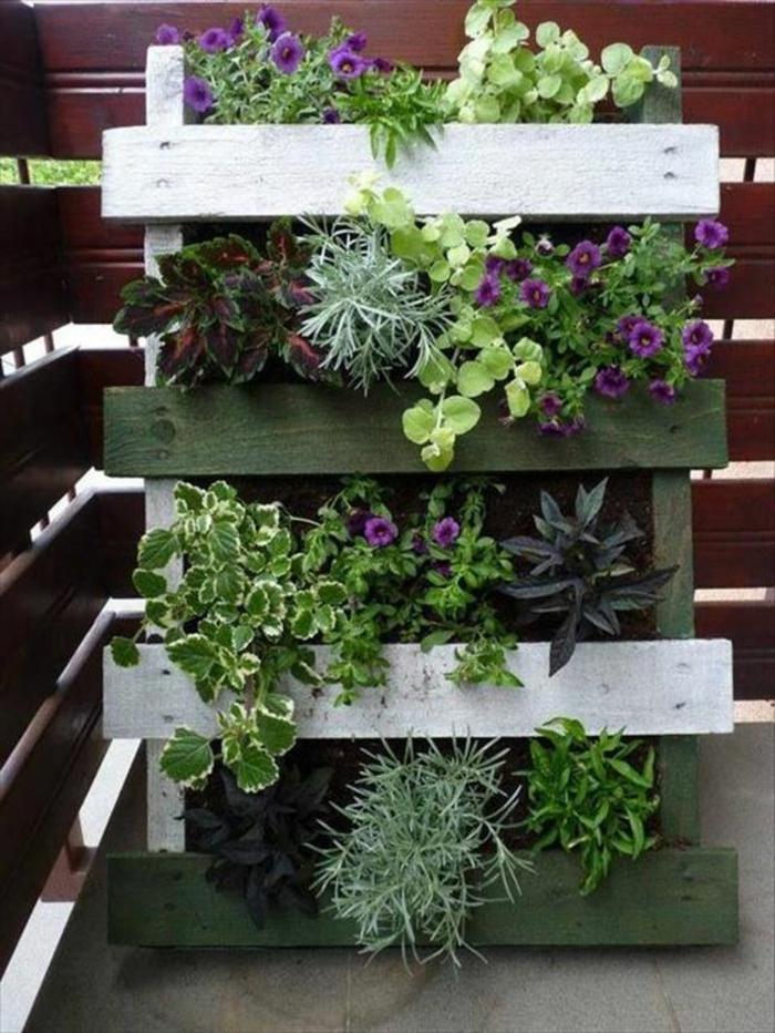 mur végétal palette, plantes décoratives sur palette peinte, pétunias