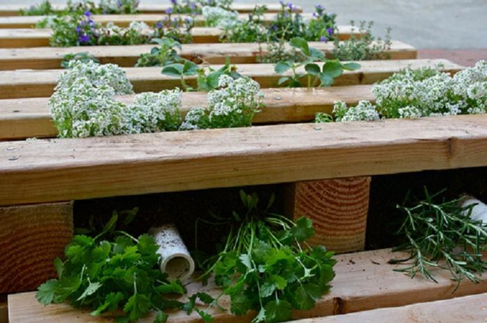 mur vegetal en palette, jardinière verticale en palette et système d'arrosage